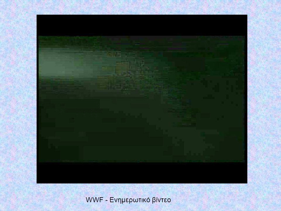 WWF - Ενημερωτικό βίντεο