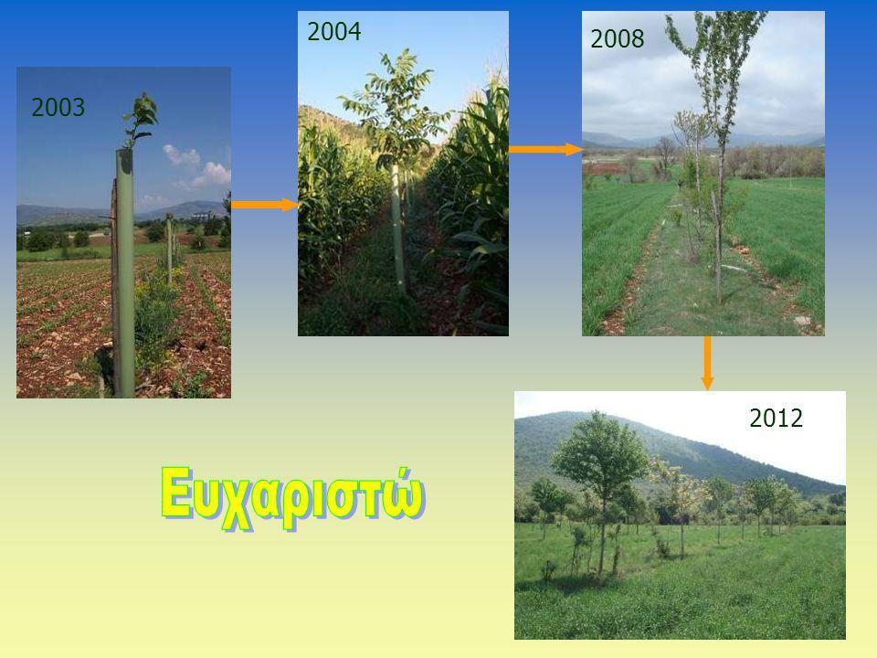2004 2008 2003 2012 Ευχαριστώ