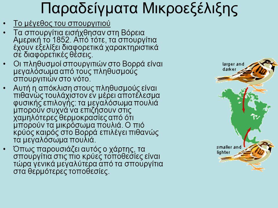 Παραδείγματα Μικροεξέλιξης