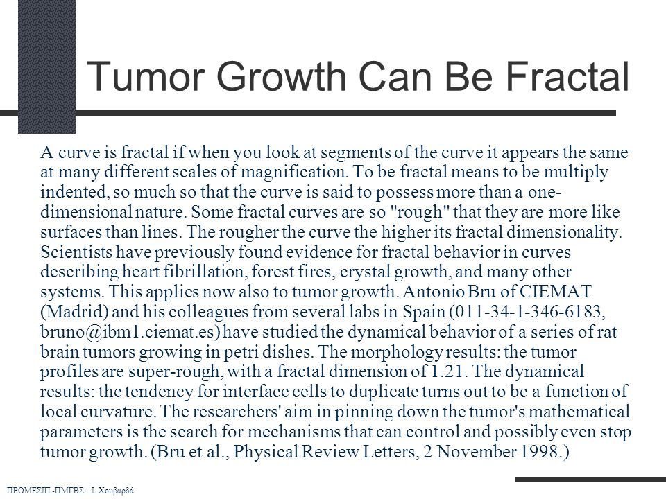 Tumor Growth Can Be Fractal
