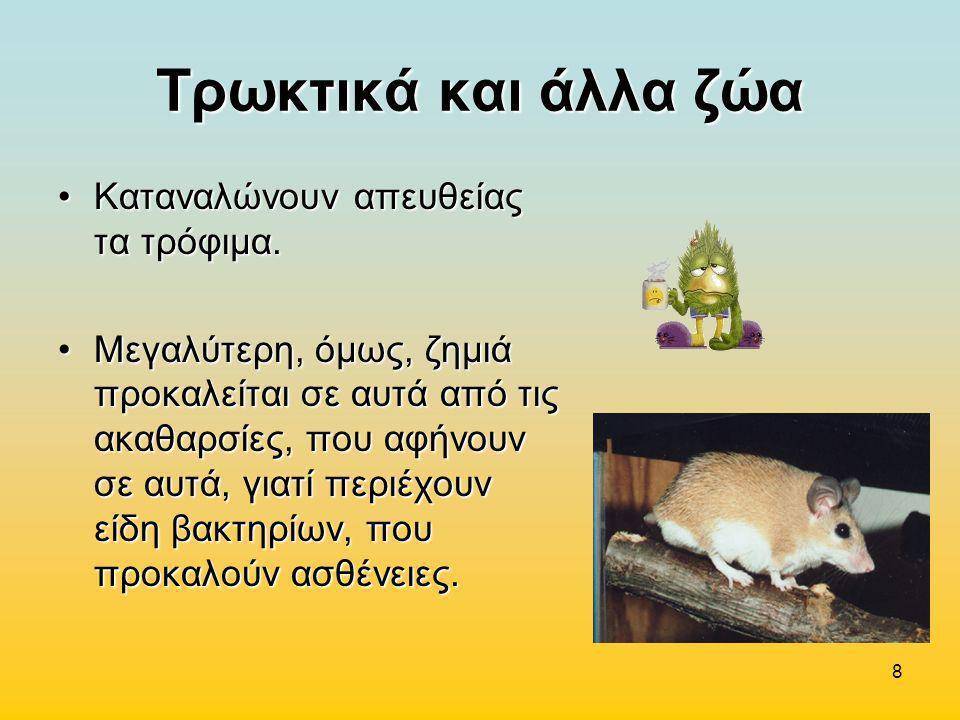 Τρωκτικά και άλλα ζώα Καταναλώνουν απευθείας τα τρόφιμα.