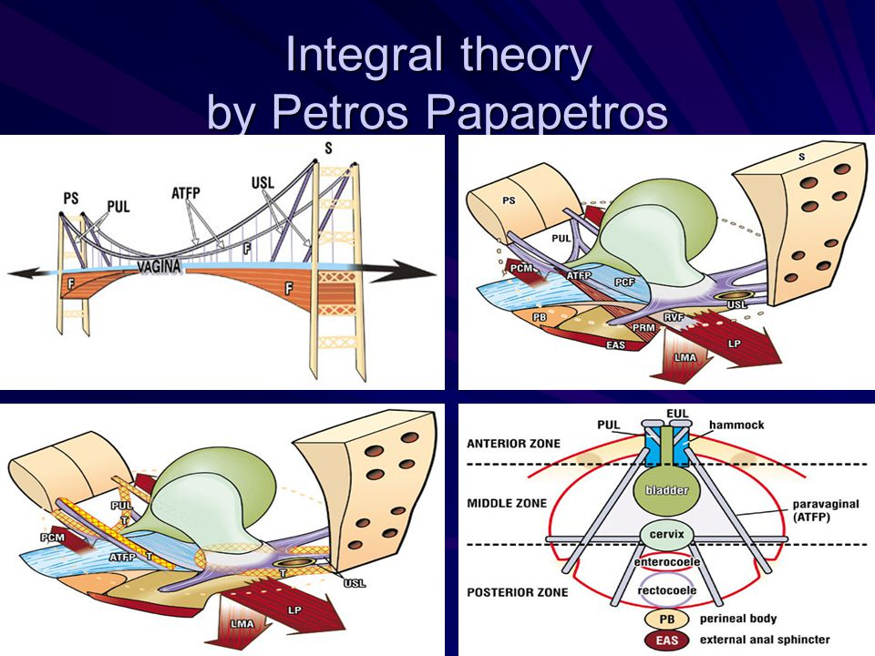 Integral theory by Petros Papapetros