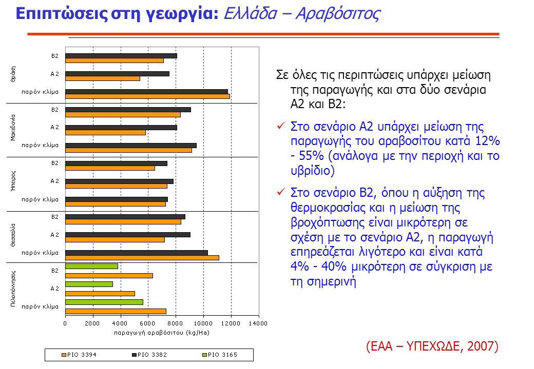 Επιπτώσεις στη γεωργία: Ελλάδα – Αραβόσιτος