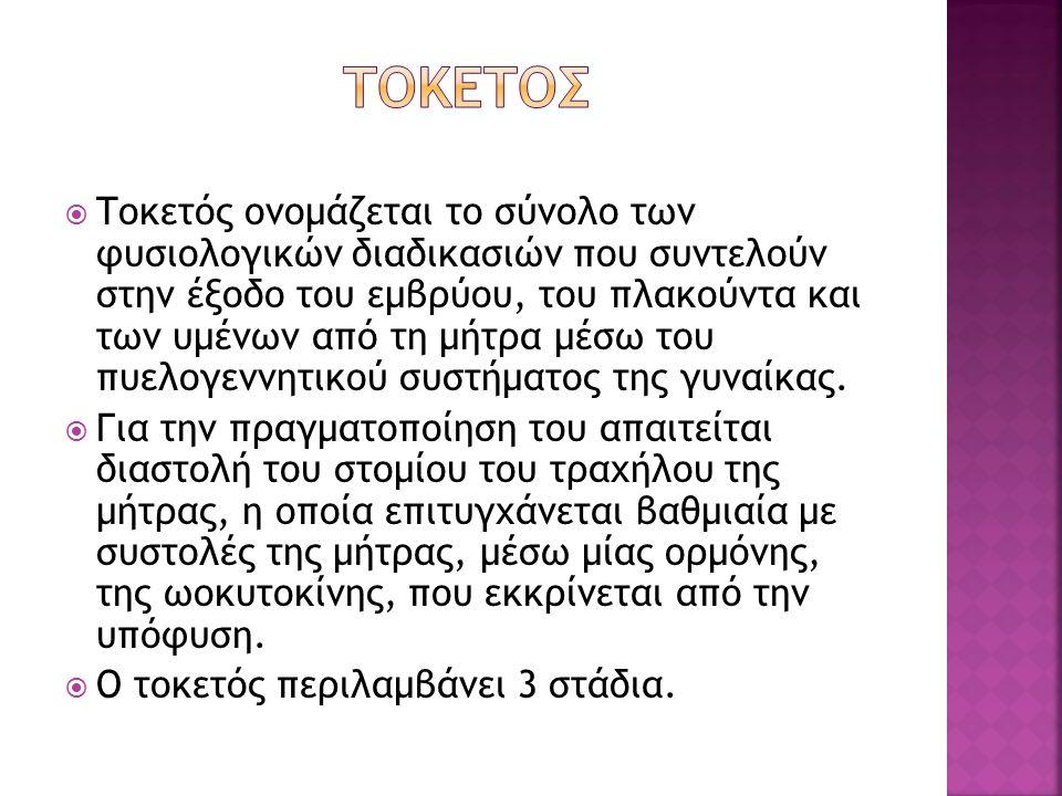 ΤΟΚΕΤΟΣ
