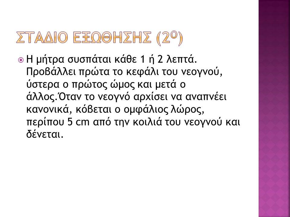 ΣΤΑΔΙΟ ΕΞΩΘΗΣΗΣ (2Ο)