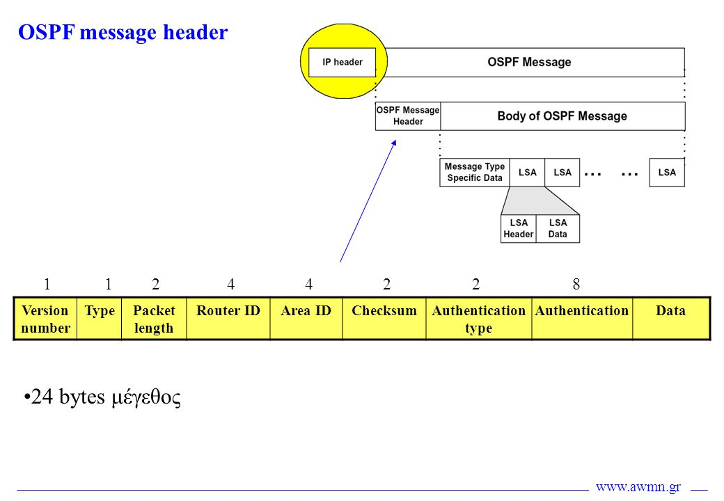 OSPF message header 24 bytes μέγεθος 1 1 2 4 4 2 2 8 Version number