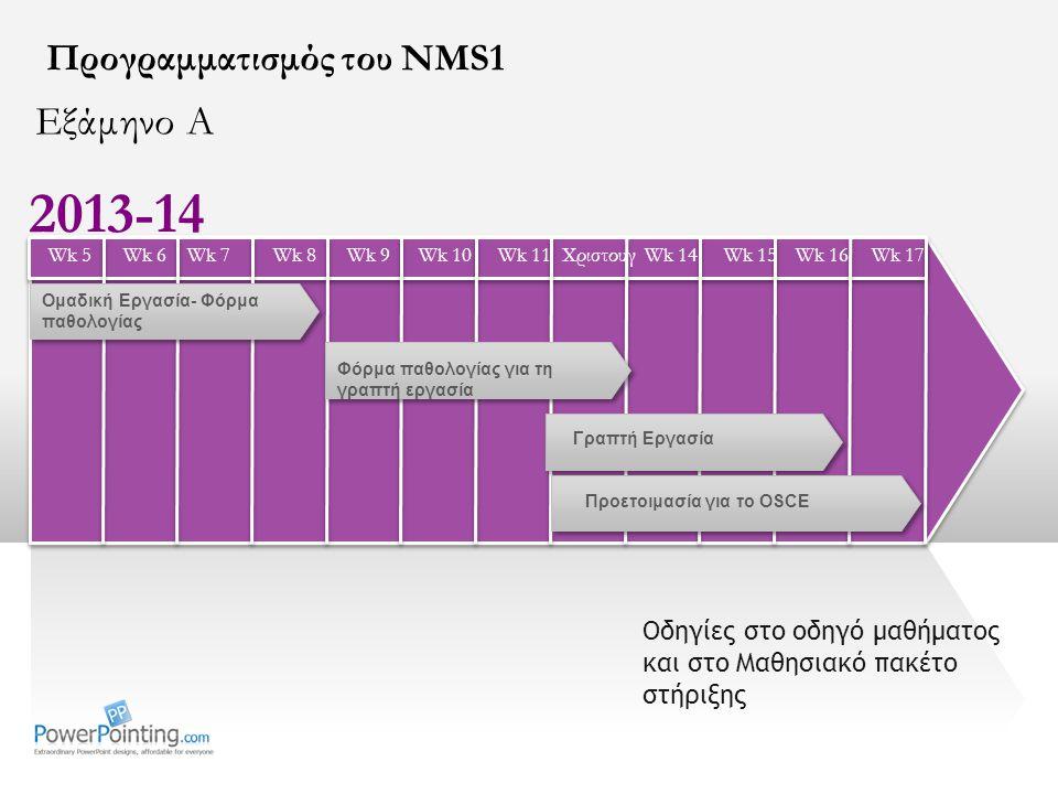 2013-14 Εξάμηνο Α Προγραμματισμός του NMS1