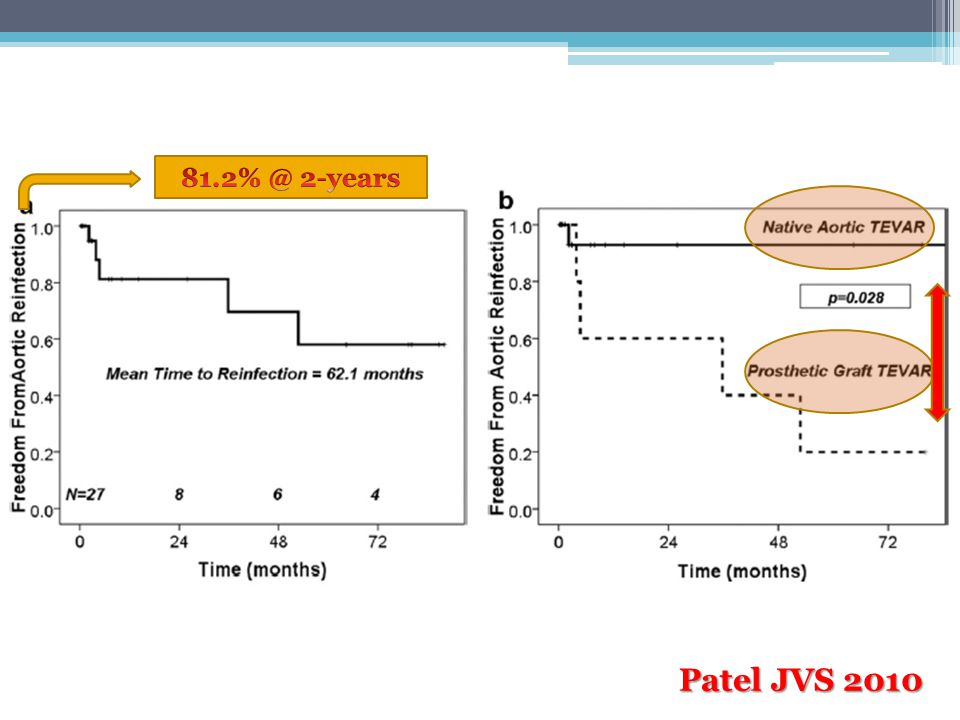 81.2% @ 2-years Patel JVS 2010