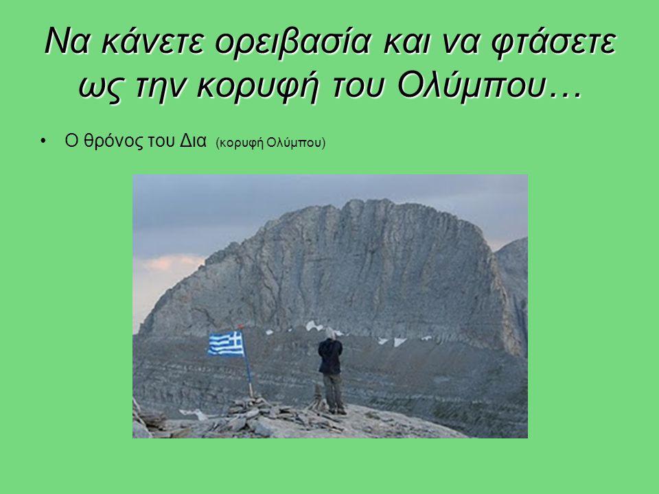 Να κάνετε ορειβασία και να φτάσετε ως την κορυφή του Ολύμπου…