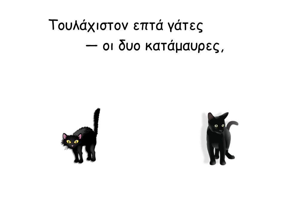 Τουλάχιστον επτά γάτες