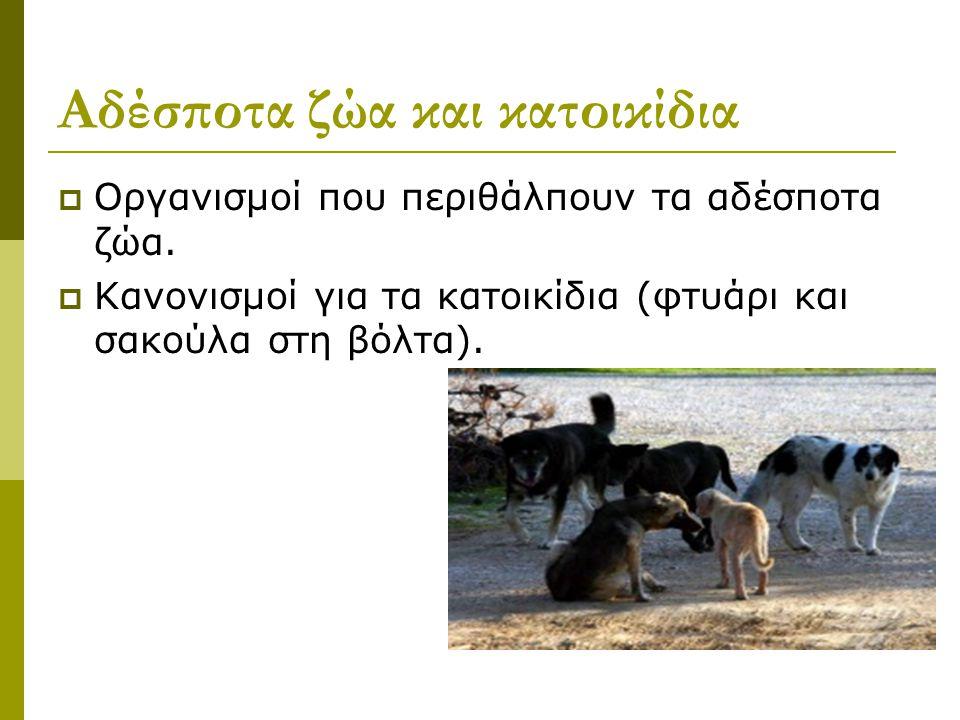 Αδέσποτα ζώα και κατοικίδια
