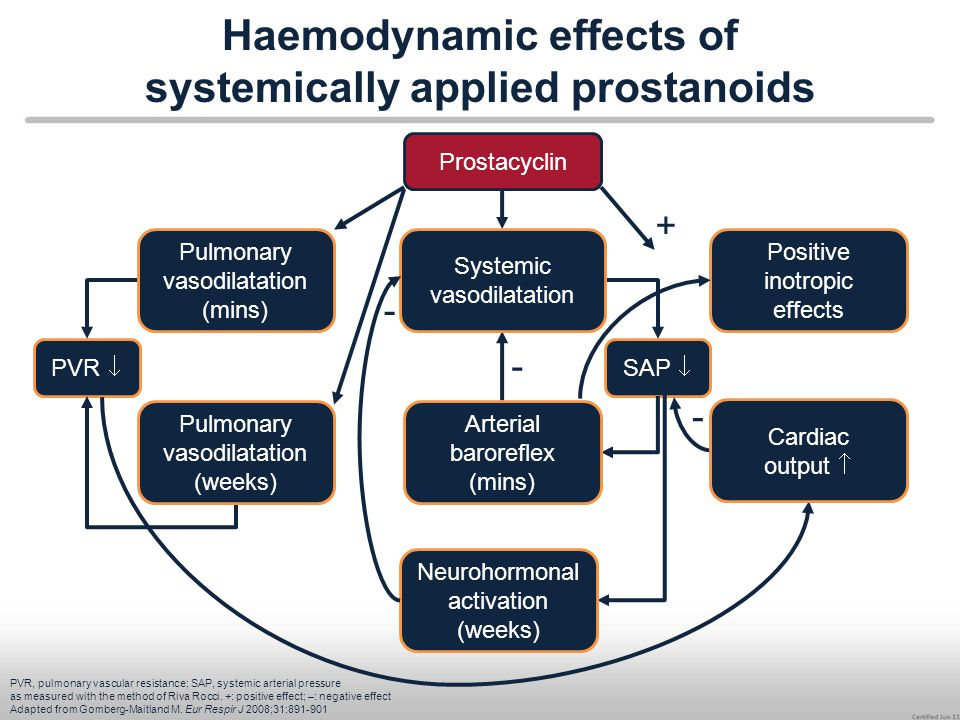 Haemodynamic effects of systemically applied prostanoids