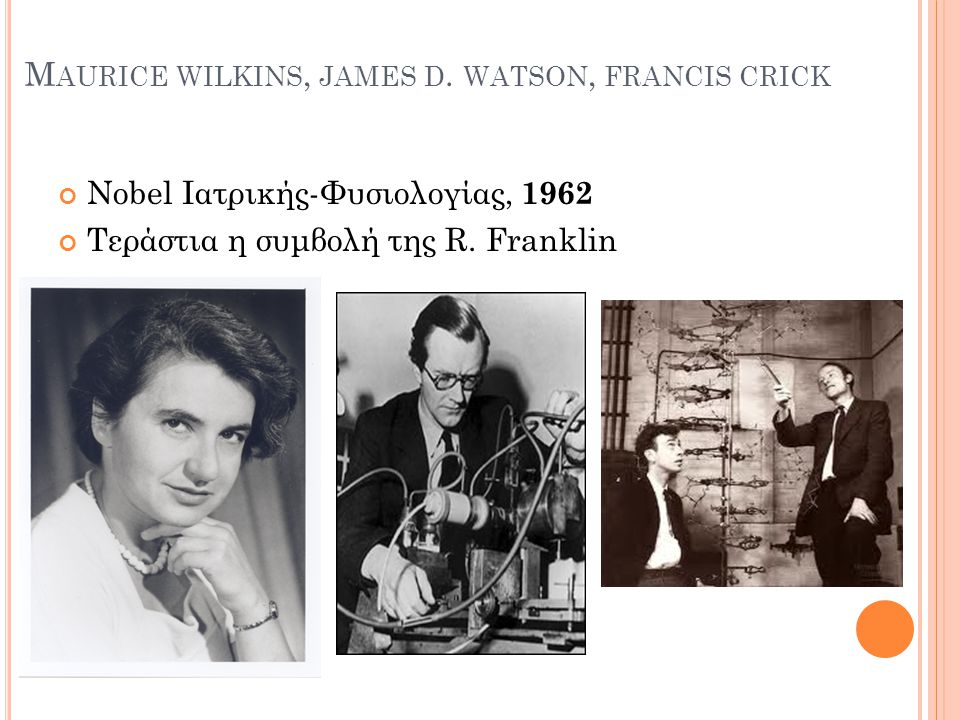 Maurice wilkins, james d. watson, francis crick
