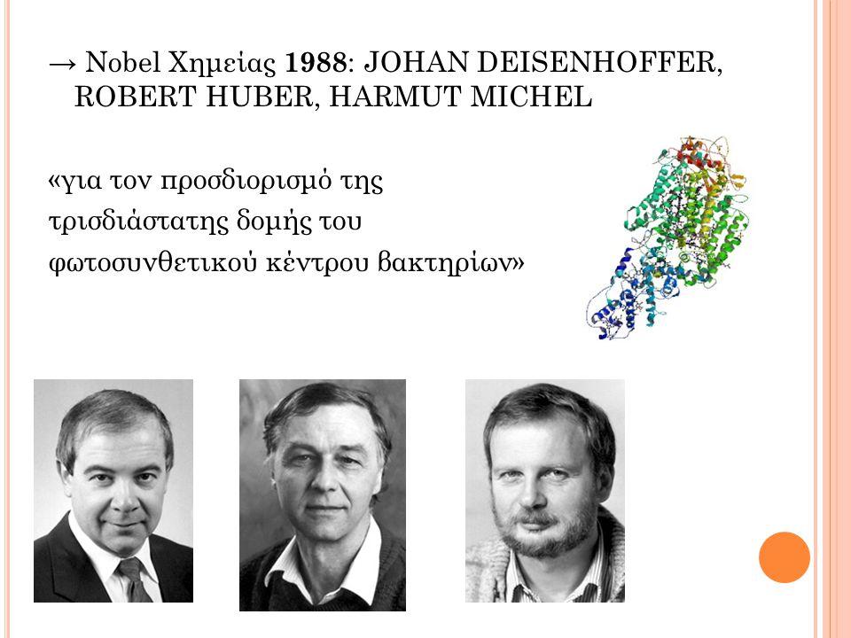 → Nobel Χημείας 1988: JOHAN DEISENHOFFER, ROBERT HUBER, HARMUT MICHEL «για τον προσδιορισμό της τρισδιάστατης δομής του φωτοσυνθετικού κέντρου βακτηρίων»