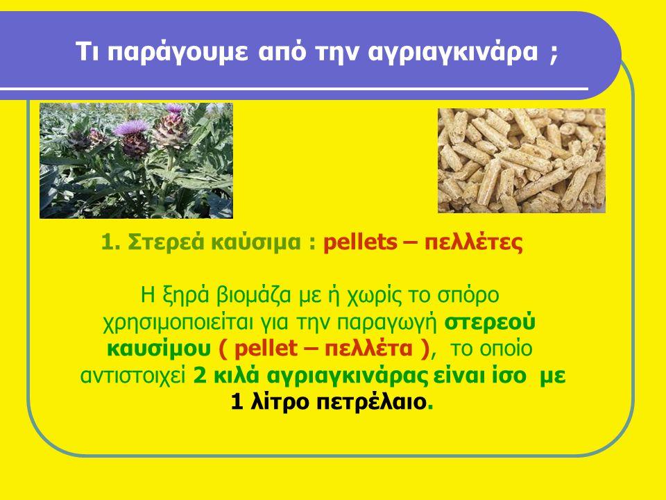 Τι παράγουμε από την αγριαγκινάρα ;