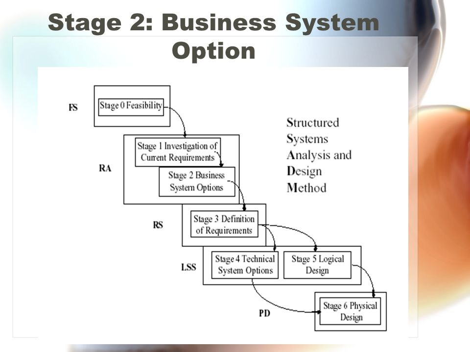 Stage 2: Business System Option