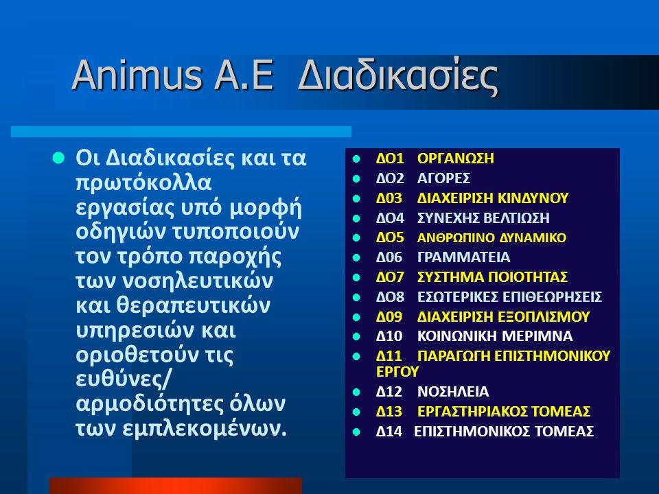 Animus A.E Διαδικασίες
