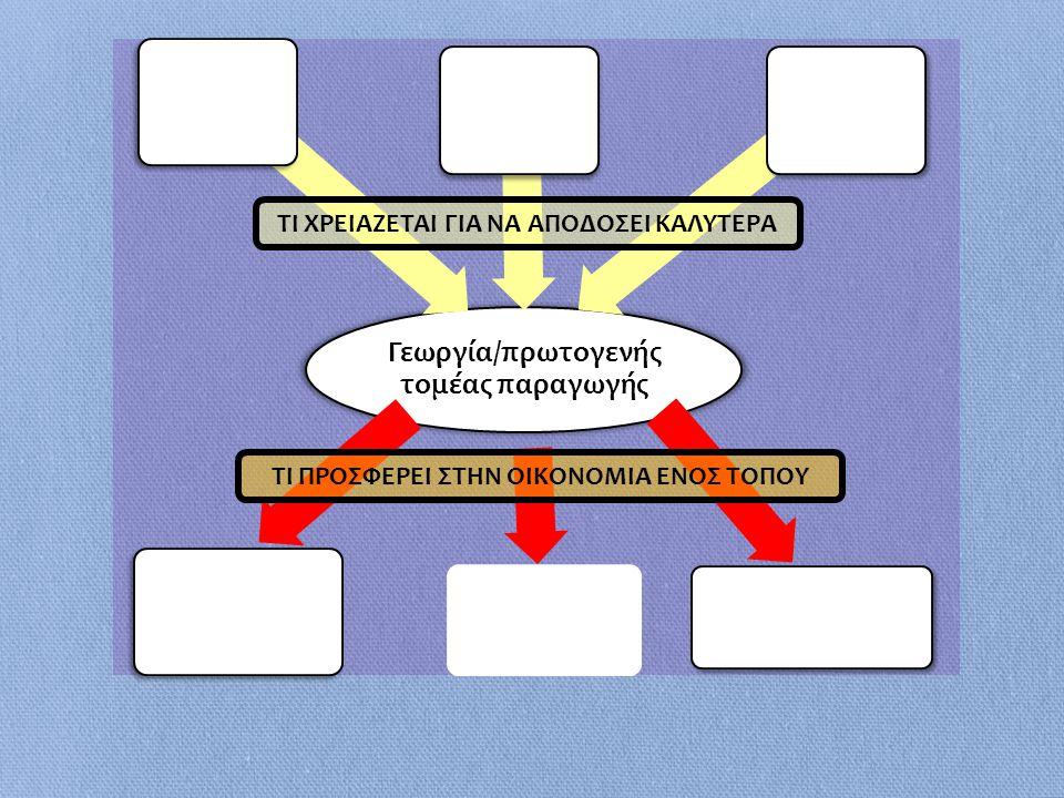 Γεωργία/πρωτογενής τομέας παραγωγής