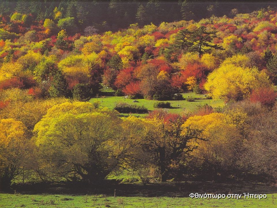Φθινόπωρο στην Ήπειρο