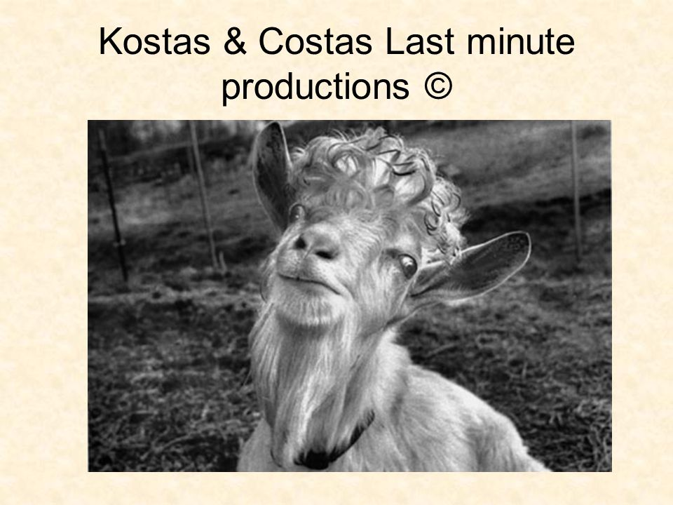 Kostas & Costas Last minute productions ©