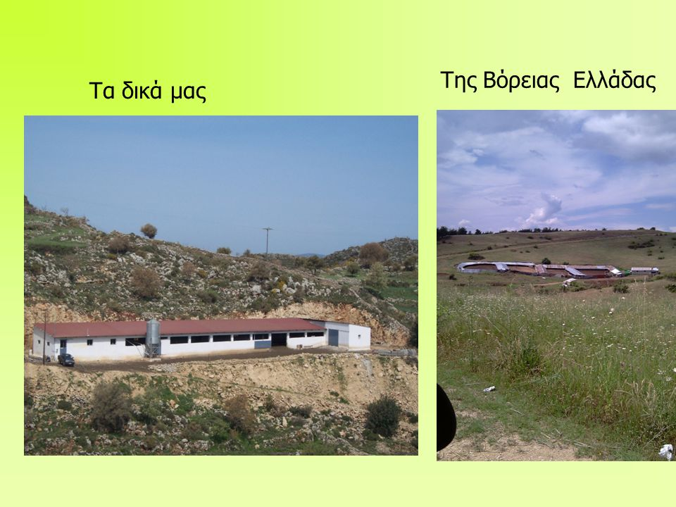 Της Βόρειας Ελλάδας Τα δικά μας