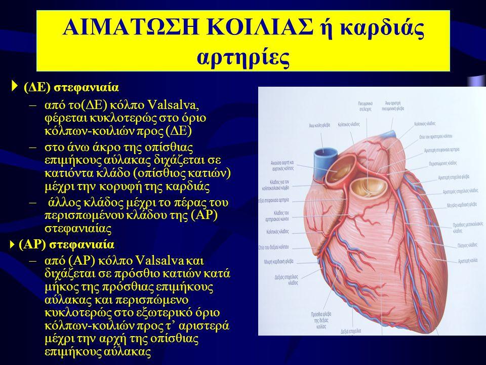 ΑΙΜΑΤΩΣΗ ΚΟΙΛΙΑΣ ή καρδιάς αρτηρίες