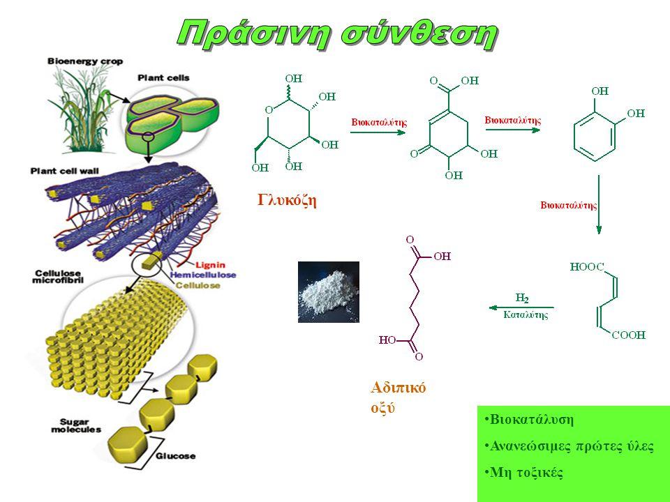 Πράσινη σύνθεση Γλυκόζη Αδιπικό οξύ Βιοκατάλυση
