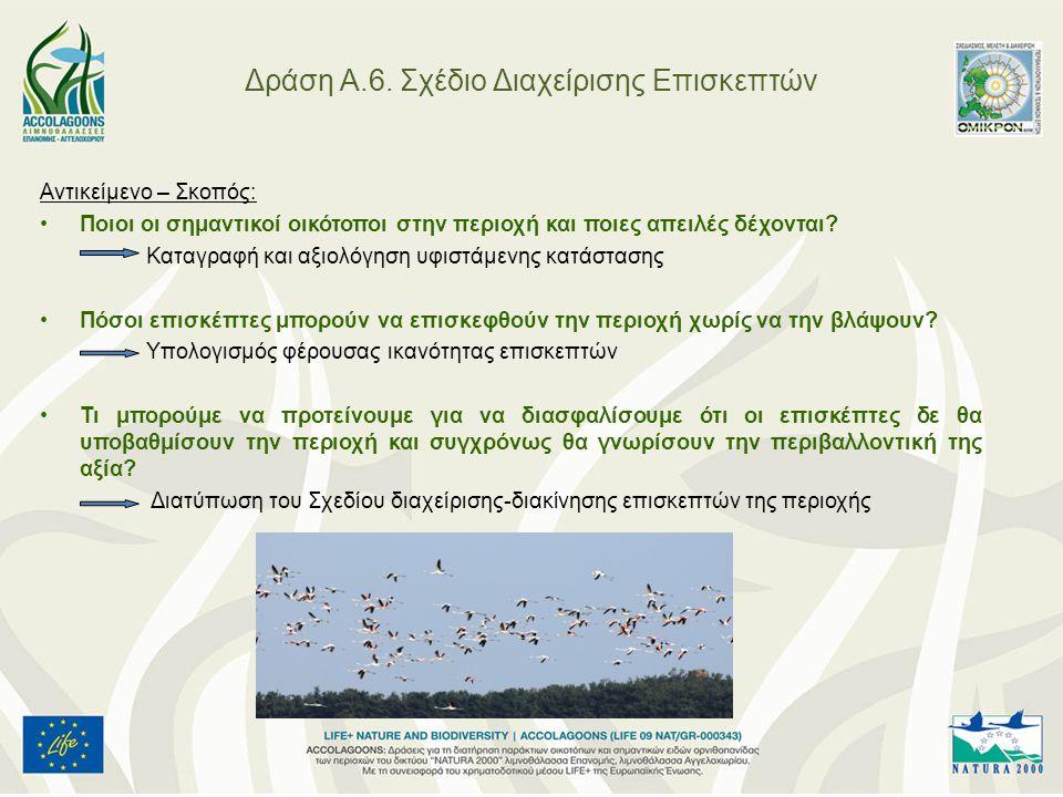 Δράση Α.6. Σχέδιο Διαχείρισης Επισκεπτών