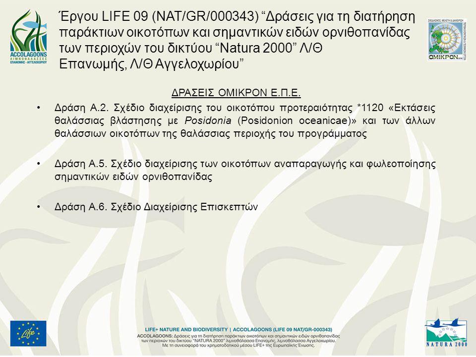 Έργου LIFE 09 (NAT/GR/000343) Δράσεις για τη διατήρηση παράκτιων οικοτόπων και σημαντικών ειδών ορνιθοπανίδας των περιοχών του δικτύου Natura 2000 Λ/Θ Επανωμής, Λ/Θ Αγγελοχωρίου
