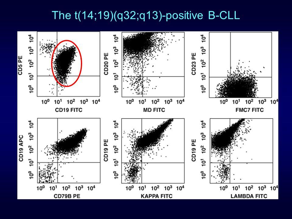 The t(14;19)(q32;q13)-positive B-CLL