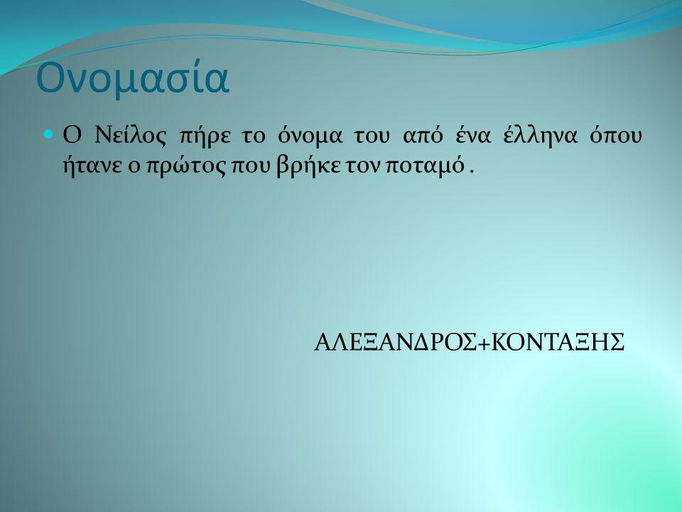 Ονομασία Ο Νείλος πήρε το όνομα του από ένα έλληνα όπου ήτανε ο πρώτος που βρήκε τον ποταμό .