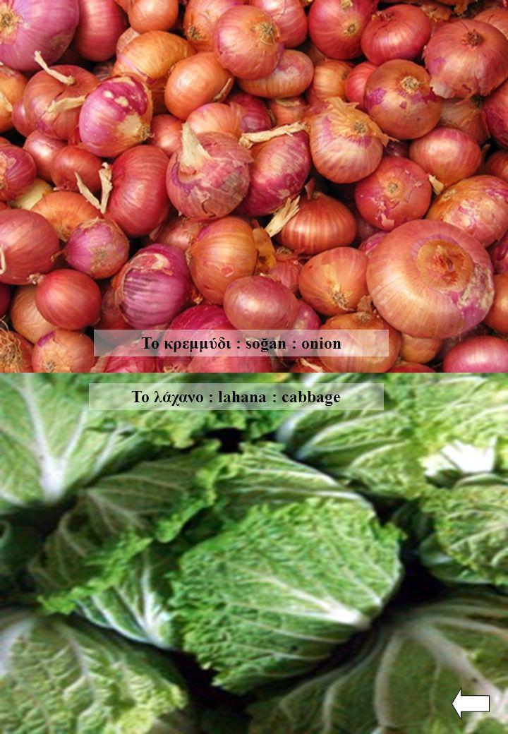 Το κρεμμύδι : soğan : onion Το λάχανο : lahana : cabbage