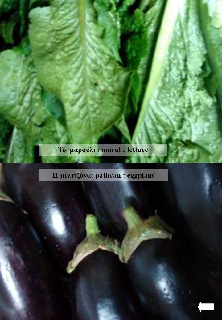 Το μαρούλι : marul : lettuce Η μελιτζάνα: patlıcan : eggplant