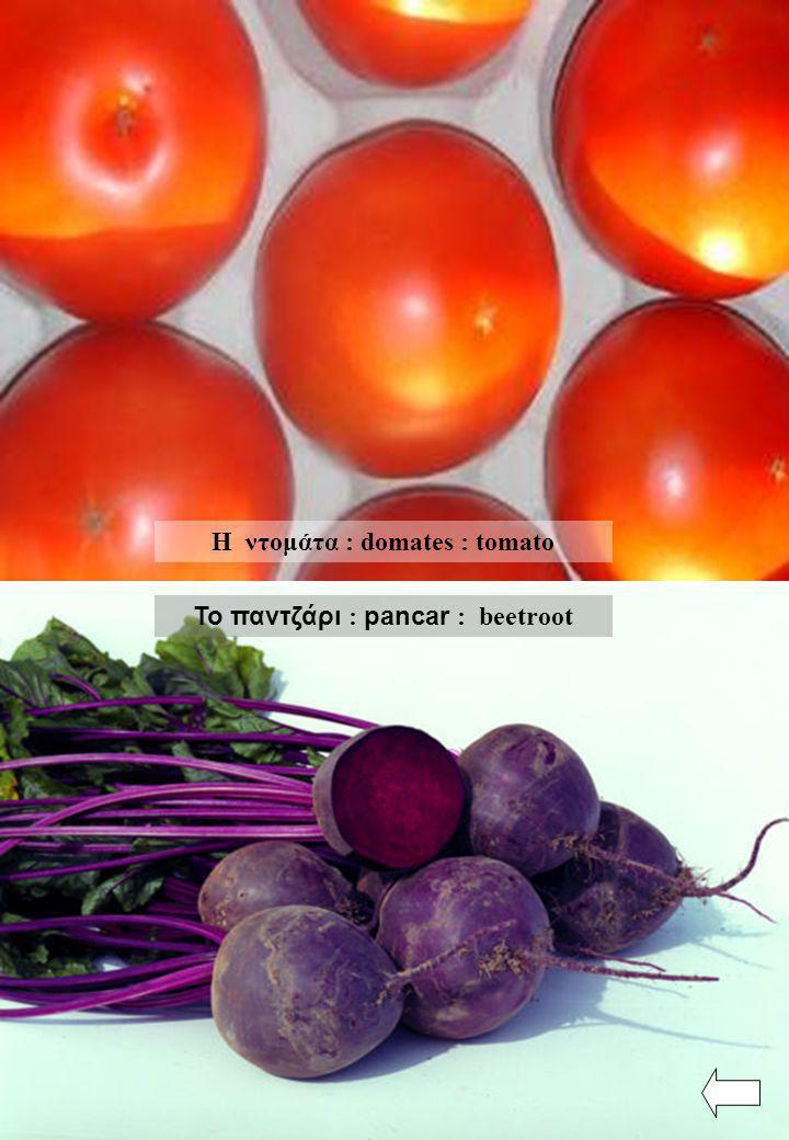 Η ντομάτα : domates : tomato Το παντζάρι : pancar : beetroot