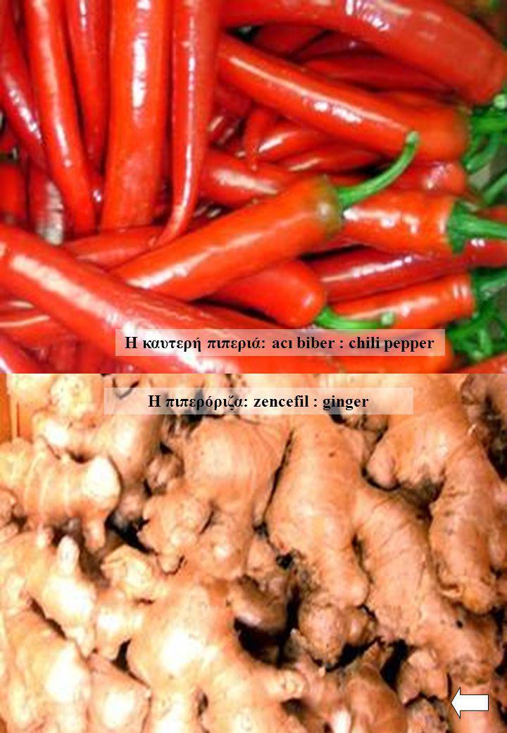 Η καυτερή πιπεριά: acı biber : chili pepper