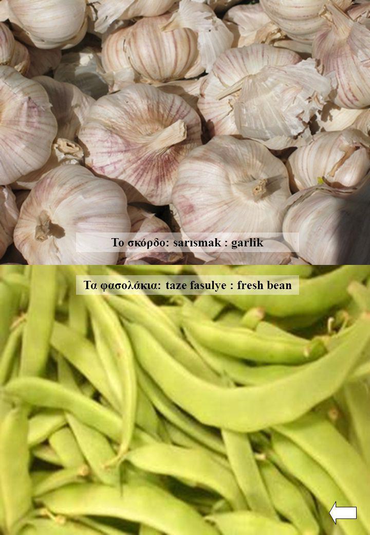 Το σκόρδο: sarısmak : garlik Τα φασολάκια: taze fasulye : fresh bean