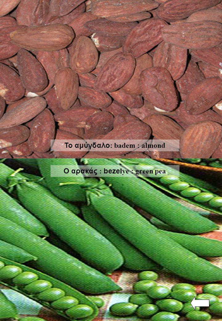 Το αμύγδαλο: badem : almond Ο αρακάς : bezelye : green pea