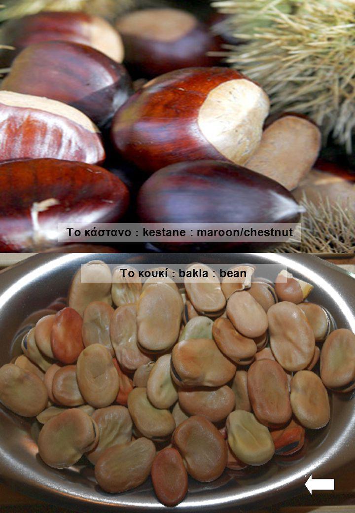Το κάστανο : kestane : maroon/chestnut
