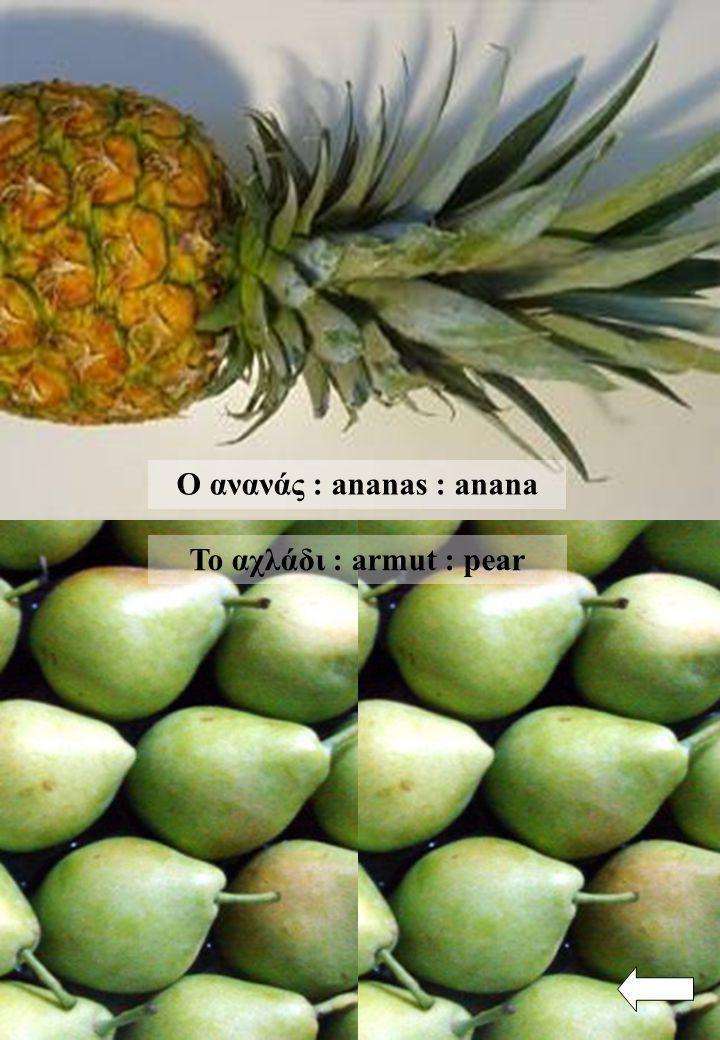 Ο ανανάς : ananas : anana