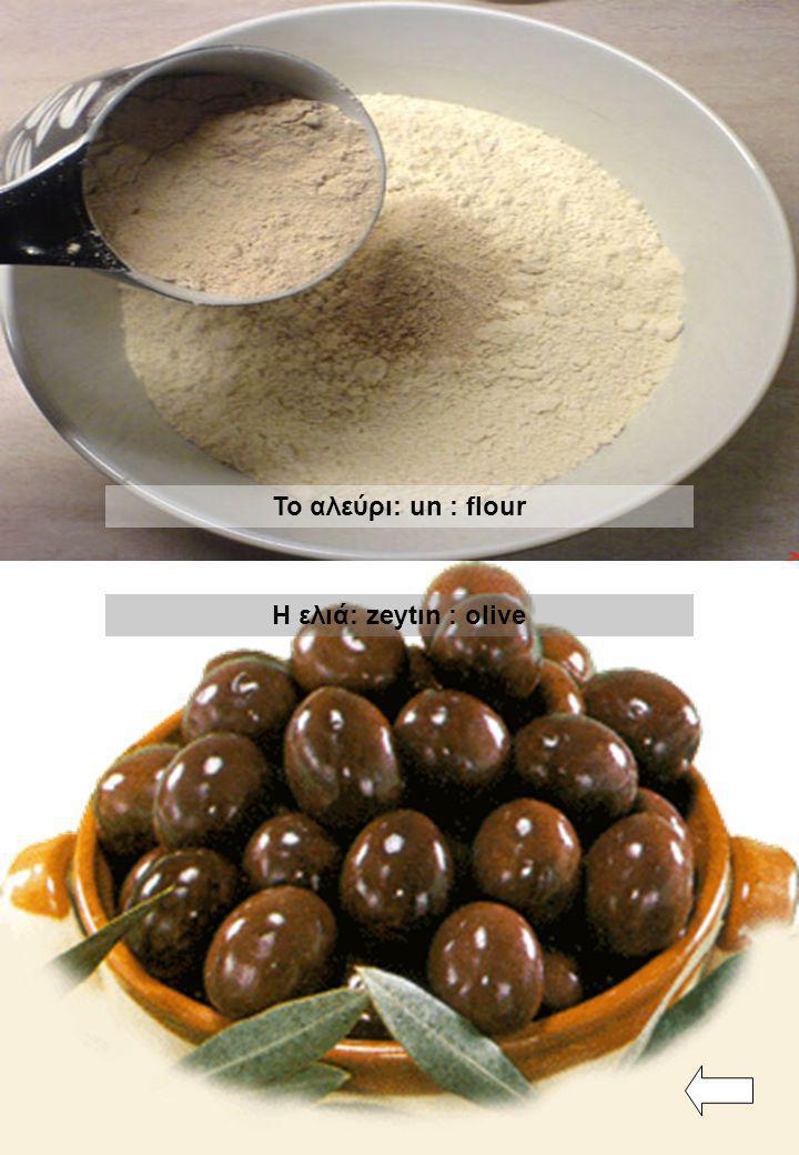 Το αλεύρι: un : flour Η ελιά: zeytın : olive