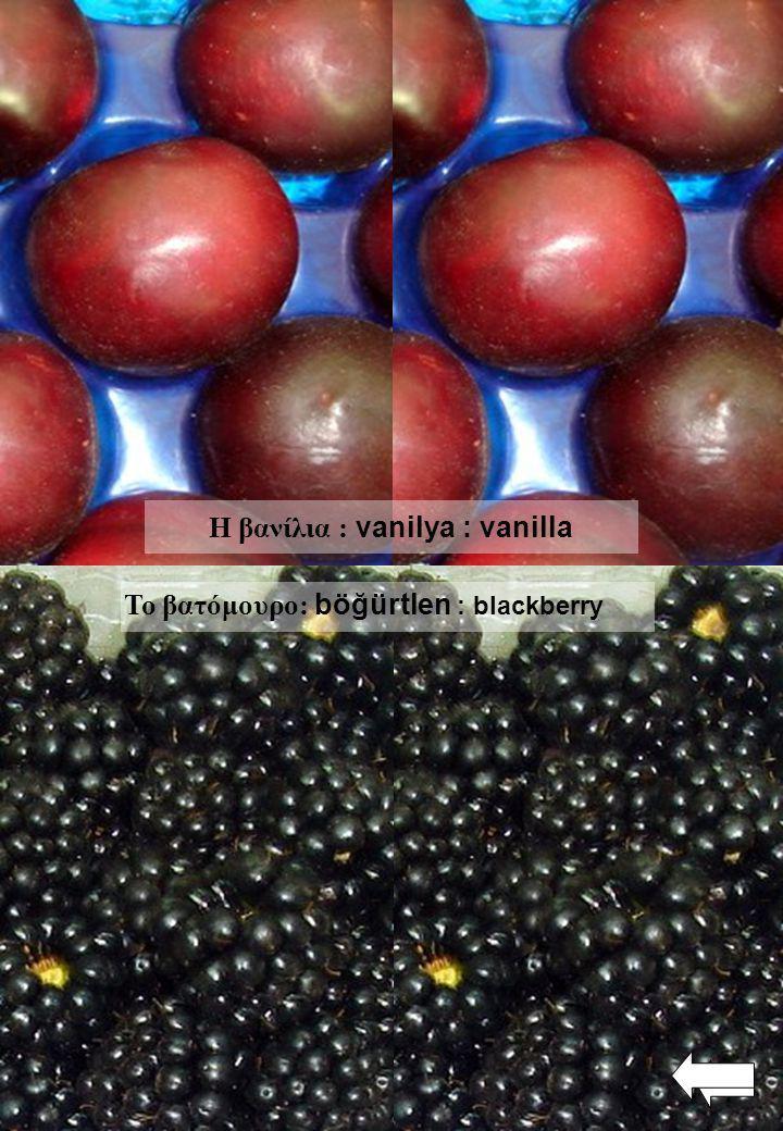 Η βανίλια : vanilya : vanilla