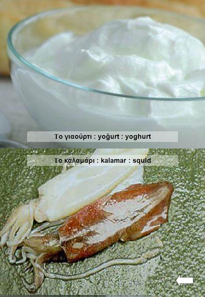 Το γιαούρτι : yoğurt : yoghurt Το καλαμάρι : kalamar : squid