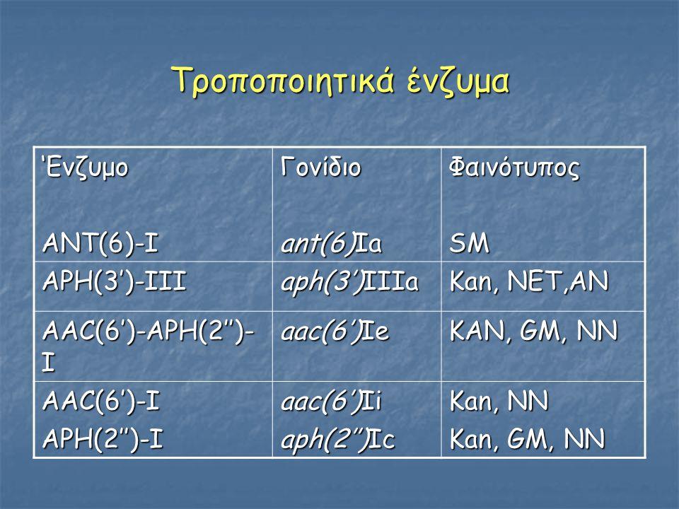 Τροποποιητικά ένζυμα 'Ενζυμο ΑΝΤ(6)-Ι Γονίδιο ant(6)Ia Φαινότυπος SM