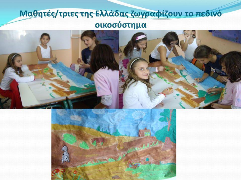 Μαθητές/τριες της Ελλάδας ζωγραφίζουν το πεδινό οικοσύστημα