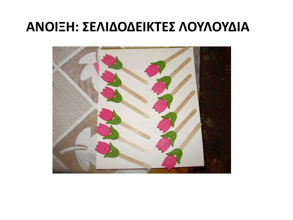 Ανοιξη: σελιδοδεικτες λουλουδια
