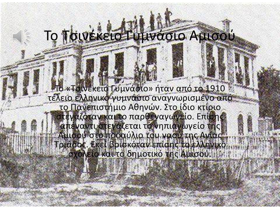 Το Τσινέκειο Γυμνάσιο Αμισού