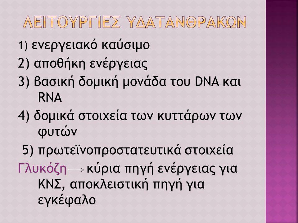 ΛΕΙΤΟΥΡΓΙΕΣ ΥΔΑΤΑΝΘΡΑΚΩΝ