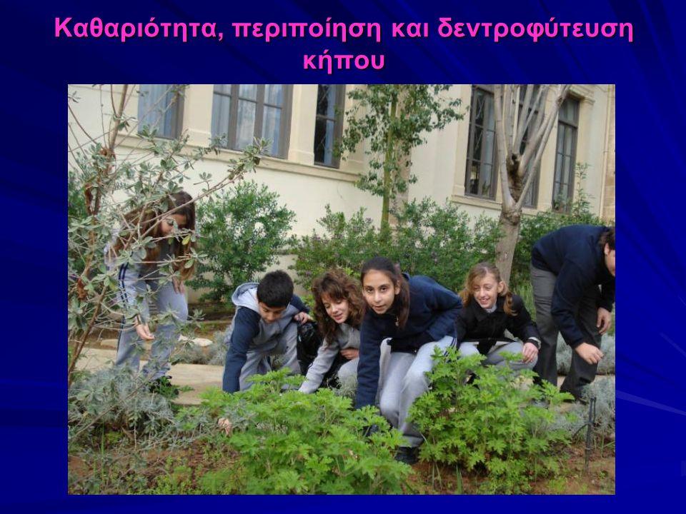 Καθαριότητα, περιποίηση και δεντροφύτευση κήπου