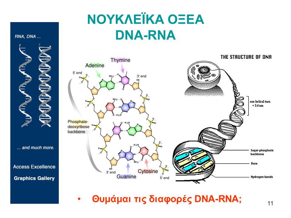 ΝΟΥΚΛΕΪΚΑ ΟΞΕΑ DNA-RNA