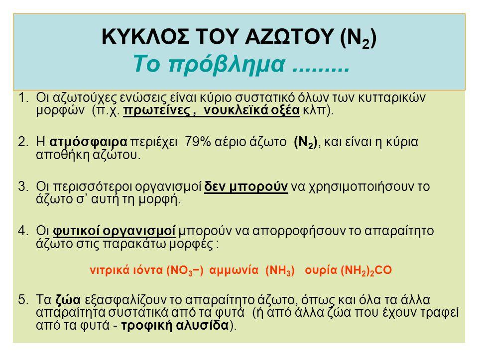 ΚΥΚΛΟΣ ΤΟΥ ΑΖΩΤΟΥ (Ν2) Το πρόβλημα .........